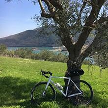 Bike Cingoli